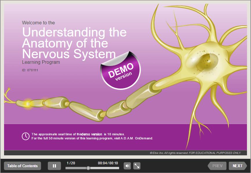 课件案例-神经学课件